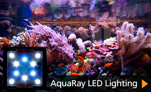 aquaray aquabeam led aquarium lighting