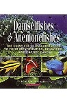 Damselfishes & Anemonefishes